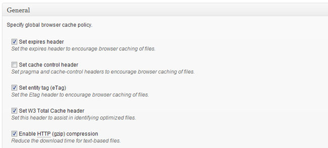 Browser cache global settings - W3 Total Cache